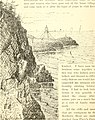 The Pine-tree coast (1891) (14779484241).jpg