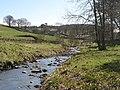 The River East Allen below Peasmeadows - geograph.org.uk - 1335705.jpg