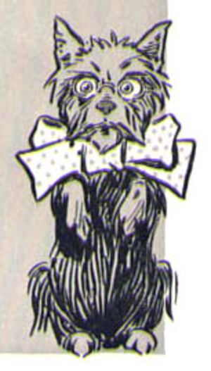 Toto (Oz) - Illustration by W. W. Denslow