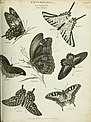 The cyclopaedia; or, Universal dictionary of arts, sciences, and literature. Plates (1820) (20200765373).jpg