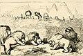 The travels and surprising adventures of Baron Munchausen; (1860) (14792797393).jpg
