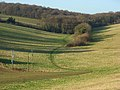 The valley between Asheridge and Bellingdon - geograph.org.uk - 1081239.jpg