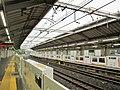 Tokyu Fujigaoka Station Platform 01.jpg