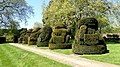 Topiary Animals at Hall Place.jpg