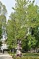 Torino - Palazzo Reale 0563.JPG