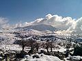 Torrecilla, Sierra de las Nieves.jpg