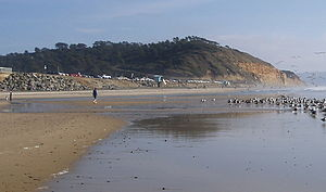 Torrey Pines State Beach - View of beach with Torrey Pines State Park in the background.