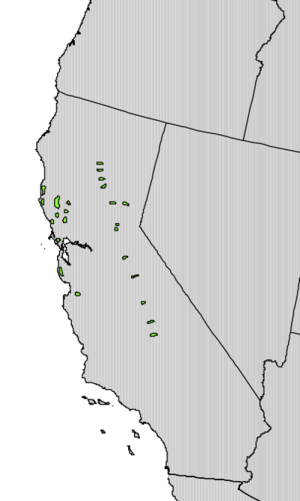 Torreya californica - Image: Torreya californica range map