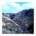 Towsley Canyon (3354755975).jpg