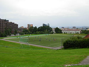 Tøyen Park - Caltexløkka