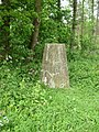 Triangulation Pillar at Settrington Beacon 199m ASL - geograph.org.uk - 439503.jpg