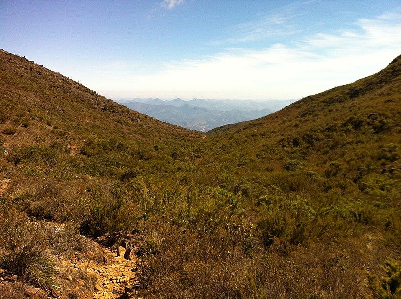 File:Trilha Pico da Bandeira - panoramio (4).jpg