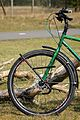 Tubus Tara lowrider luggage carrier on front fork of green bicycle.jpg