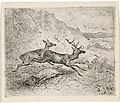 Twee lopende herten, RP-P-1882-A-5432.jpg