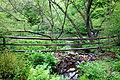 Tyler Arboretum - DSC01780.JPG