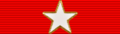 USA - TX Lone Star Distinguished Service.png