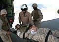USMC-090617-M-0493G-060.jpg