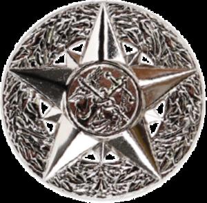 Sylvia Trent-Adams - Image: USPHSCC Deputy Surgeon General Badge