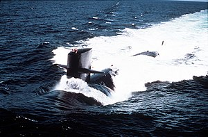USS Ray (SSN-653)