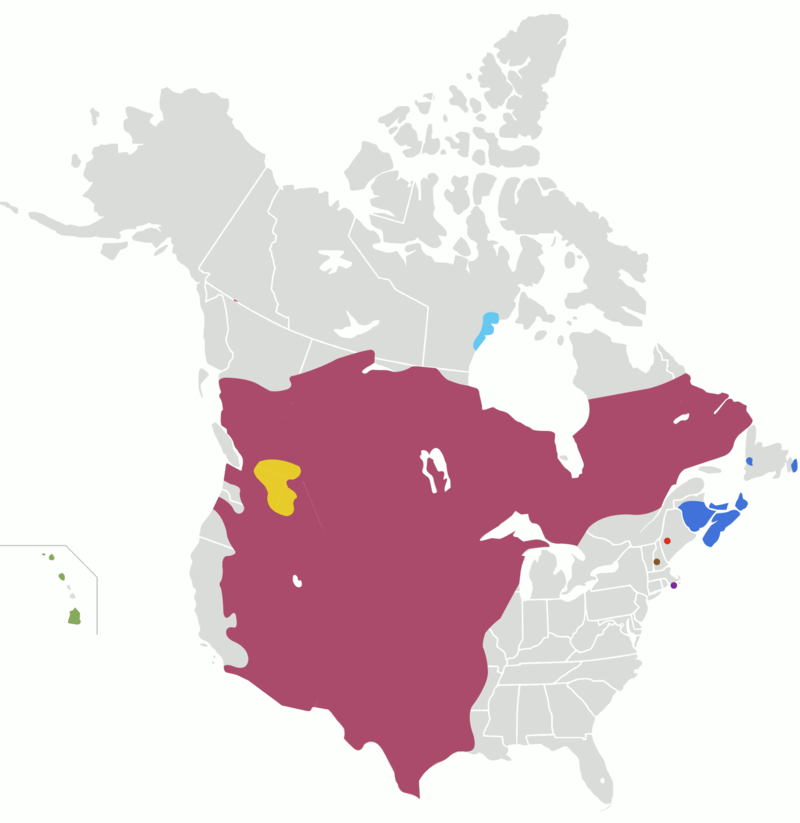 Attested historical ranges of sign languages of the US and Canada excluding ASL and LSQ.  Plains Sign Talk Inuiuuk (inoiook) Hawai'i Sign Language Maritime Sign Language Plateau Sign Language Martha's Vineyard Sign Language Henniker Sign Language Sandy River Valley Sign Language US & Canada sign-language map (excl. ASL and LSQ).png