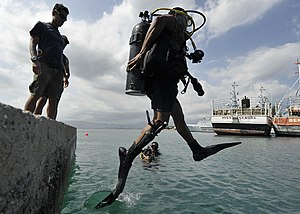 Scuba skills - Stride entry or front step entry from a low dockside