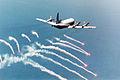 US Navy 960900-N-0000F-001 A P-3C.jpg