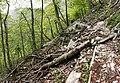 Ukanc - trail.jpg