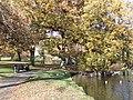 Universitetssøerne (november).jpg