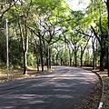 University of Sao Paulo campus 2016 003.jpg