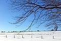 Upper Bavaria - 2019-02-16 Chiemsee 054 Herren-Insel (33321775808).jpg