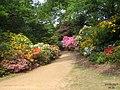 Valley Gardens (5679836459).jpg