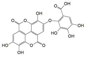 Valoneic acid dilactone - Image: Valoneic acid dilactone