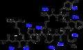 Vasopressin labeled.png