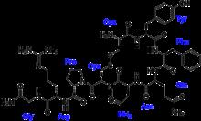 RefId Cp080120 further Cardiovascular Regulatory Mechanisms furthermore 12525140 further Ventricular System Of Brain Final also El Desarrollo Tecnologico Moderno De 20. on adh vasopressin