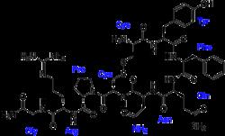 Vazopresino-labeled.png