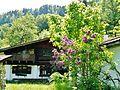 Verlassenes Haus in der Nähe vom Freibergsee - panoramio.jpg