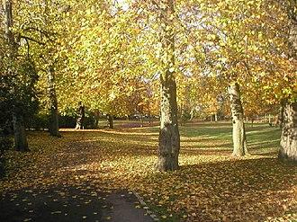 Victoria Park, Aberdeen - Victoria Park in Autumn.