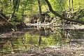 Vidange lac des Minimes avril 2010 - 011.JPG