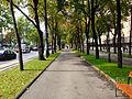 Vienna Ringstrasse Sept 2014 - 1 (15232261582).jpg