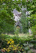 View inside the overgrown Aulne Abbey during golden hour (DSC 0102).jpg