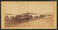View looking up the Bay from opposite Steamboat Landing, Alton Bay, N.H, by Clifford, D. A., d. 1889 2.png