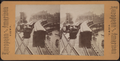 View of the elevated railway with 2 trains, from Robert N. Dennis collection of stereoscopic views.png
