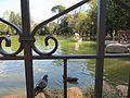 Villa Borghese - Giardino del Lago - panoramio (1).jpg