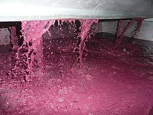 Vin rouge (décuvage).JPG