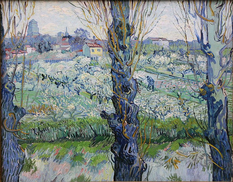 A close view of three blossoming trees behind which can be seen a large orchard and field in which a man is working, a village filled with buildings and houses in the background, under a bright sky.