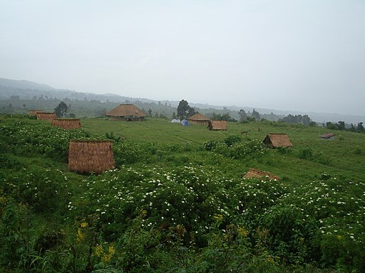 Virunga National Park-119499
