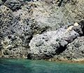 Volcanic breccia, Lipari Island, Italy - panoramio.jpg