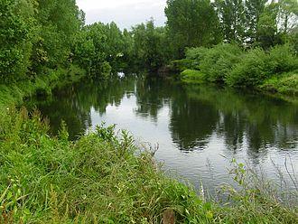 Waihou River - Waihou River