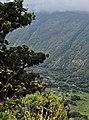 Waipi'o Valley (33516888372).jpg
