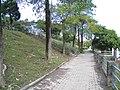 Walkway beside Nangang Park Pond 20121215a.jpg